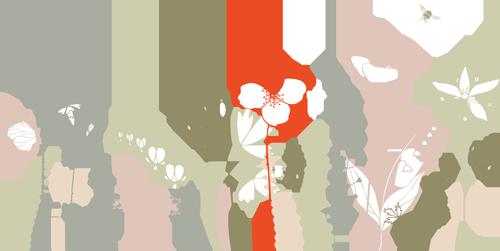My-garden-
